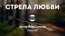 Стрела любви пастор Игорь Соколов 17 июня 2018