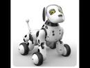 Собака-робот на пульте управления. Лучшая игрушка 2018 года