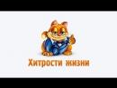 35 НЕВЕРОЯТНЫХ КУЛИНАРНЫХ ЛАЙФХАКОВ
