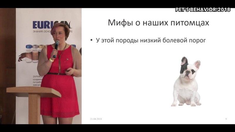 Боль в жизни животных Что нужно знать владельцу Татьяна Краснова на Pet's behavior 2018