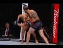 Браун вырубает Санчеза на UFC FN 120/ Удар локтем с прихватом ноги, прижимая к клетке