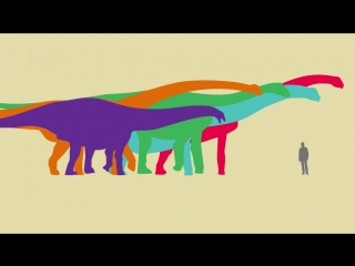 What Was the Worlds Biggest Dinosaur