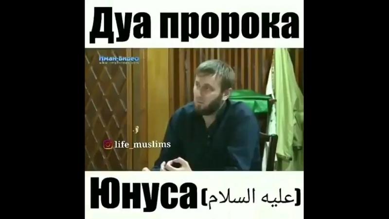 ✔ Ду'а пророка Юнуса عليه السلام! ●