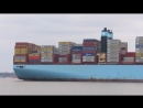 Triple E Maribo Maersk arrives to Felixstowe on a busy day of Ultra Large Vessel