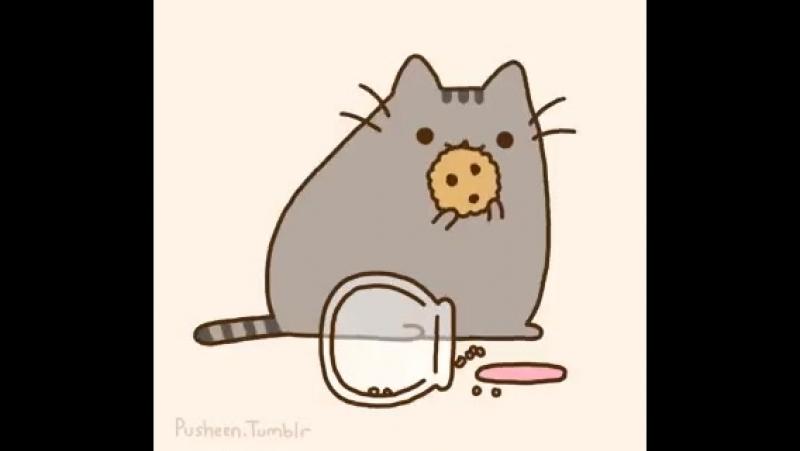 ♥Пушин котя♥