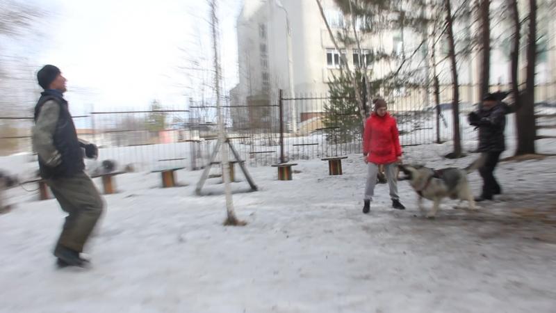 Тренинг по защите в Первоуральске. ВЕО. Ювелир...8274