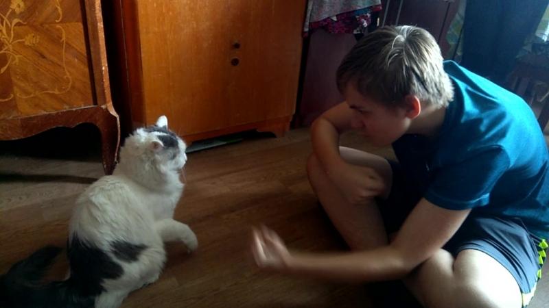 Батя Грегор карает кота-зибералиста по имени Сеся