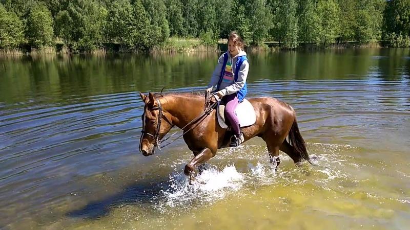 Первое купание коня - После