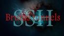 Брут SSH тоннелей Брутфорс SSH Masscan SSH brute by Despe
