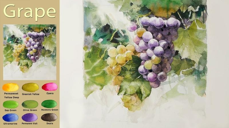 과일풍경수채화- 포도 (습식기법, 아르쉬 황목)[남일 수채화] Landscape Watercolor - Grape. NAMIL ART