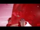 Video297