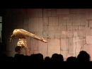 They told me it wasnt possible now Im a contortionist Nina Burri TEDxBern