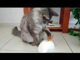 Интерактивная игрушка для кошек Фезер Хайдер с датчиками движения и звуковым чипом 15 см GiGwi PetDroid