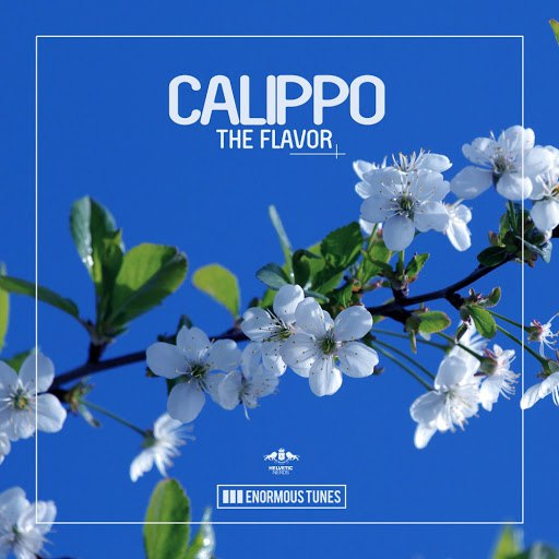 Calippo альбом The Flavor