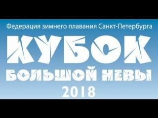 Кубок Большой Невы 2018. 25 баттерфляй
