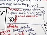Video 4673.секс.пенис.орган(аппарат, средство) связи, но он же и орган жизни