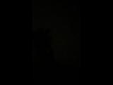 Армен Саркисов Live