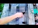 поймали 05.08.18 летучих мышей в домике в саду