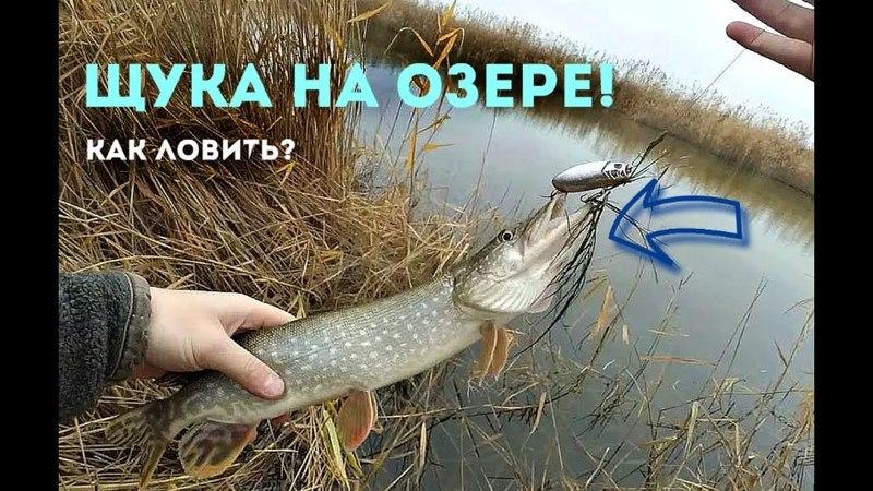 Как наловить много щуки в озёрах прудах и карьерах Секреты ловли щуки на озере