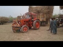 Belarus 510 Tractor going to sugar mill must wath Power of Belarus Tractor