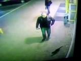 Милиционера из Полоцка, который пнул кота и попал на видео, уволили из органов внутренних дел.