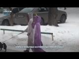 Топ-5 самых интересных видео Омска за месяц