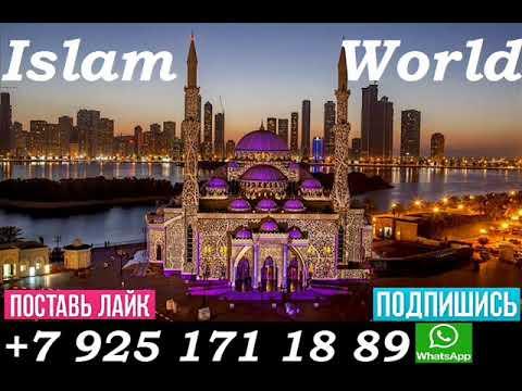 ДУА Чтобы Аллах Услышал Вас о Ваших Потребностях и Мечтах! Действенно В Месяц Рамадан! Ин Ша АЛЛАХ!