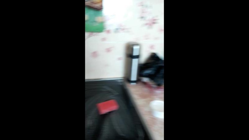 Экосредство Special Paste. Посмотрите моё видео, как я каплей пасты отмыла всю квартиру