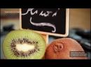 5 Beneficios de los Kiwis Ciencia de la Comida