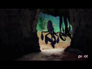 Осьминог мама осьминог мультфильм Германия