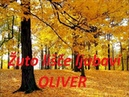 Oliver Dragojević - Žuto lišče ljubavi (Potpuri) 5/15