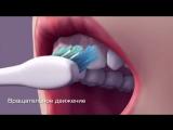 Как правильно чистить зубы.
