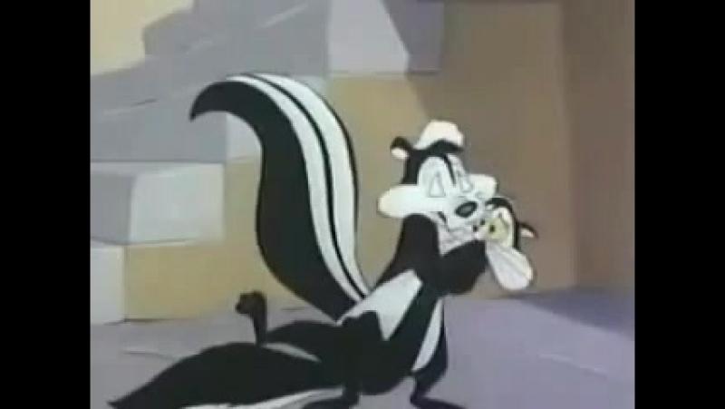 A Gatinha e o Gambá (Pepe Le Pew is Odor-able)