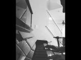 Corey Taylor Instagram