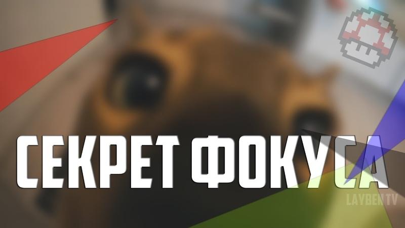 VLOG: ФОКУСЫ ОТ КОТА И ХОЗЯИНА / Лабецкий Егор