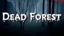 Dead Forest - Мертвый лес - Игра 2018 - Обзор первый взгляд на русском - Full Game