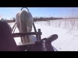 катим на лошадке