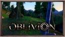 The Elder Scrolls IV Oblivion. О этот огромный мир Обливиона.. 5