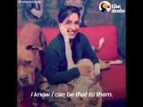 Девушка не перестаёт помогать взрослым собачкам, которые очень нуждаются в любви!