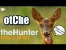 OtChe - theHunter Call of the Wild - Отстрел козлов и оленей - 18