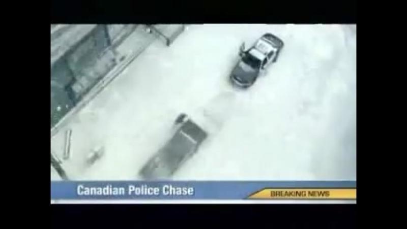 канадские менты преследуют преступников)