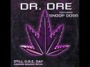 Dr. Dre - Still D.R.E ft. Snoop Dogg в FL Studio 20