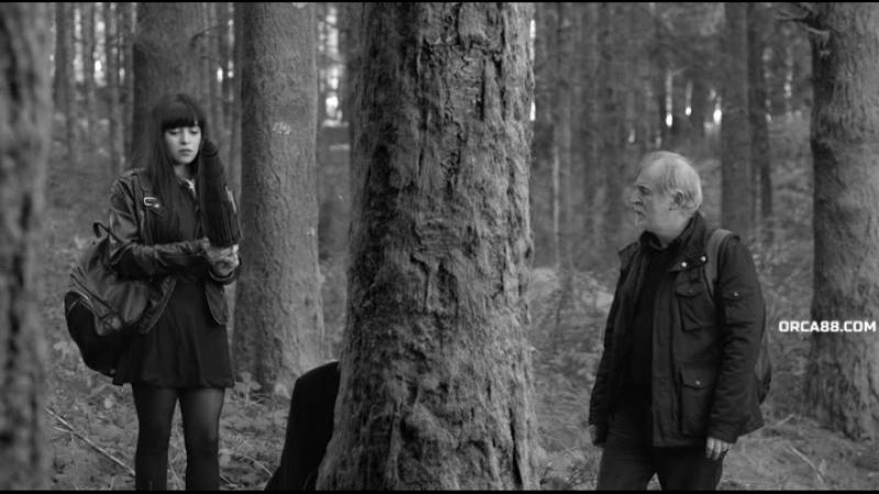 Лес потерянных душ (2017) A Floresta das Almas Perdidas / The Forest of the Lost Souls