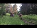 Покатушки на лошадях типи Волка