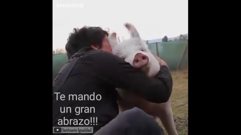 Te mando un abrazo