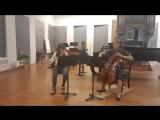 Weber. Trio for flute cello and piano