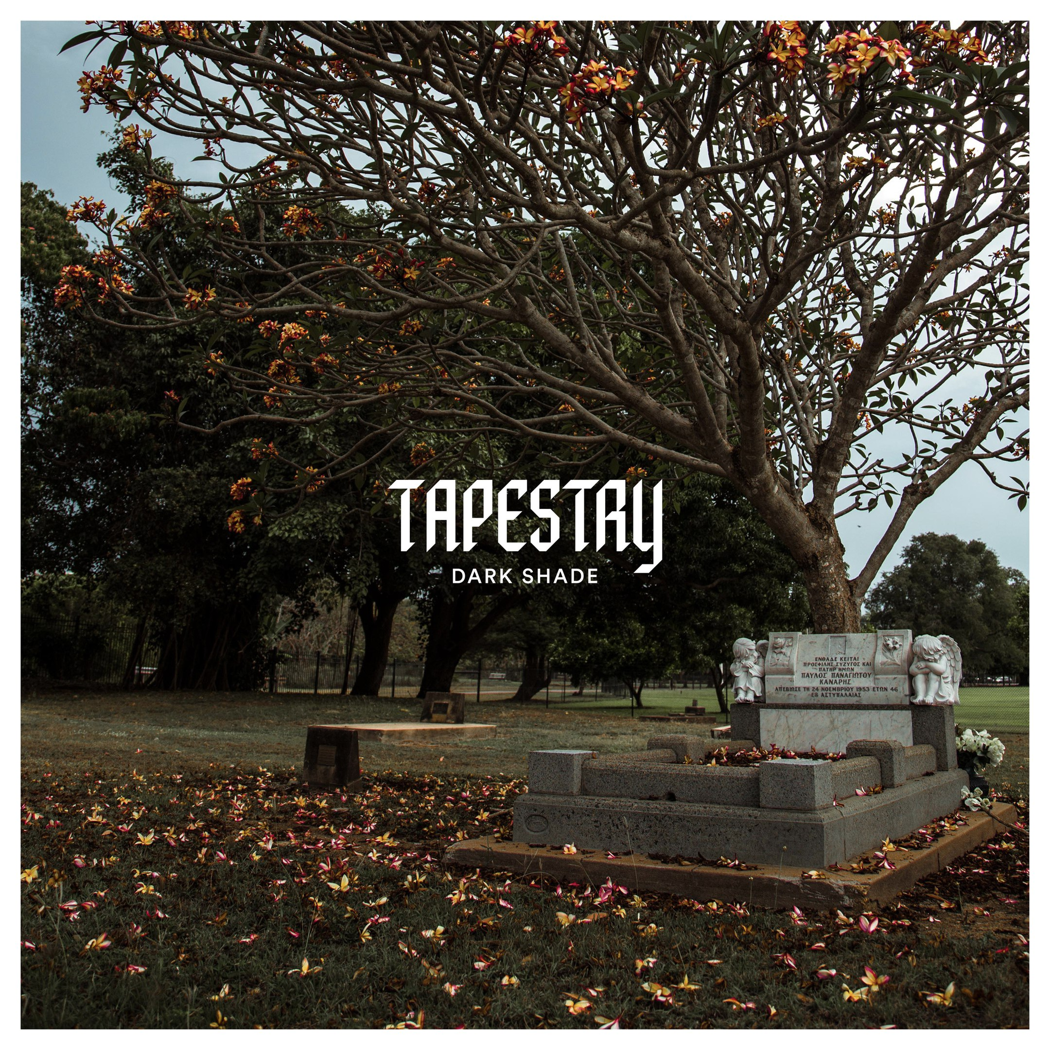 Tapestry - Dark Shade [single] (2017)