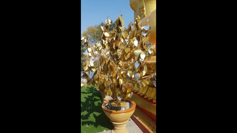 В Храме Будды Тайланд