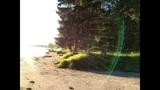 Спиннинг с берега Иваньковское Водохранилище