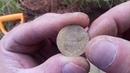 Поиск монет на скошенном поле 2018